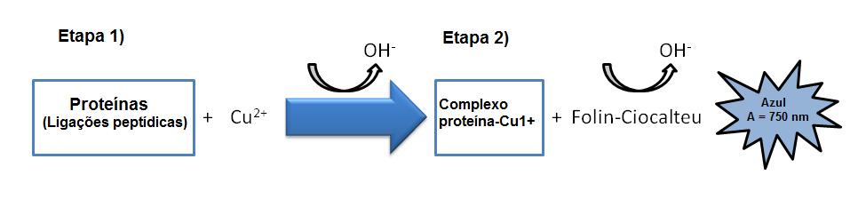 Количественный анализ белка Рисунок 3