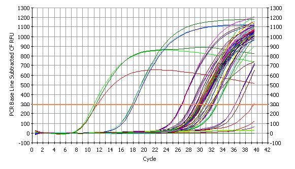 PCR方法 图 3