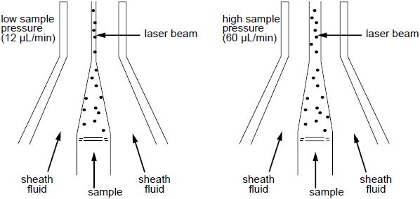 流式细胞术-纵览与基础   图 3