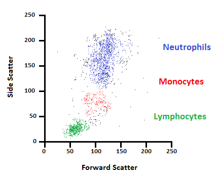 flow cytometry a survey and the basics