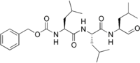 Протеасома ингибиторы Рисунок 2