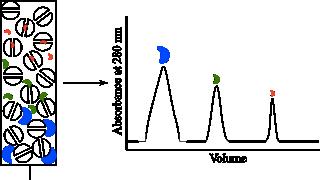 Выделение и очистка белков Рисунок 9