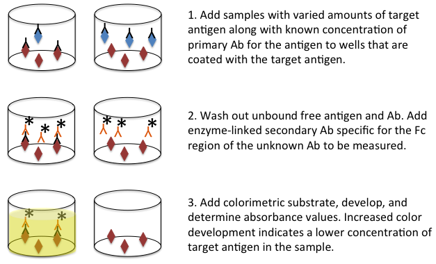 Antibody Applications