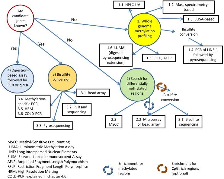DNA 甲基化研究方法 图 8
