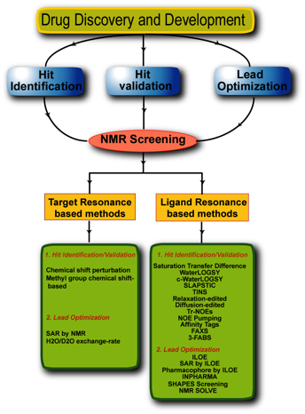 Nmr Spectroscopy In Drug Discovery And Development